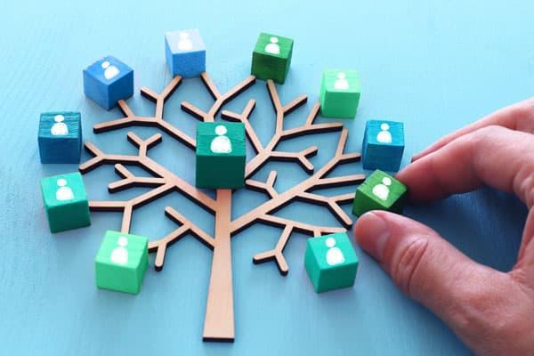 Arbre en bois avec cube autour