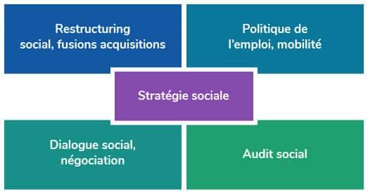 Schemas de stratégie sociale